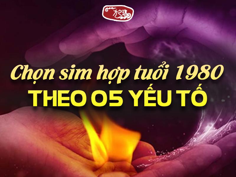 nhung-dieu-can-biet-de-chon-mua-sim-hop-tuoi-1980-chinh-xac.html (2)